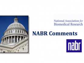 NABR Comments
