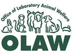 OLAW Update on 21st Century Cures Act Implementation