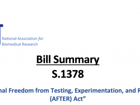 S.1378 After Act 2021