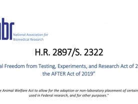 H.R.2897/S.2322 Bill Summary