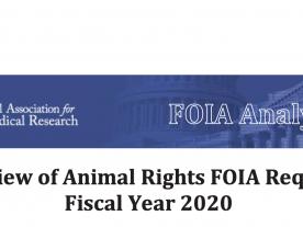 FY2020 FOIA Final Report