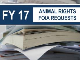 FY2017 FOIA Report
