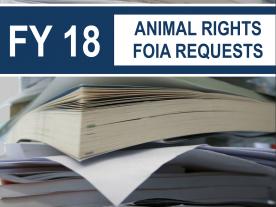 FY2018 FOIA Report